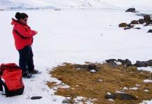 En busca del secreto de las dos únicas plantas que crecen en la Antártida