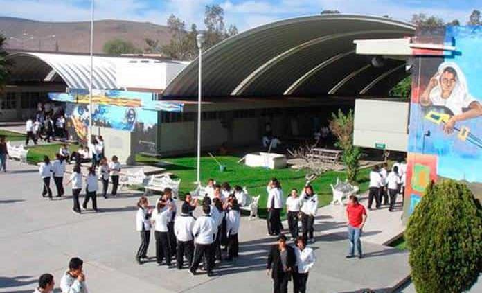 Se gradúan 8 mil jóvenes del Cobach