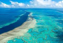 Los corales se adaptan mejor de lo pensado al cambio climático