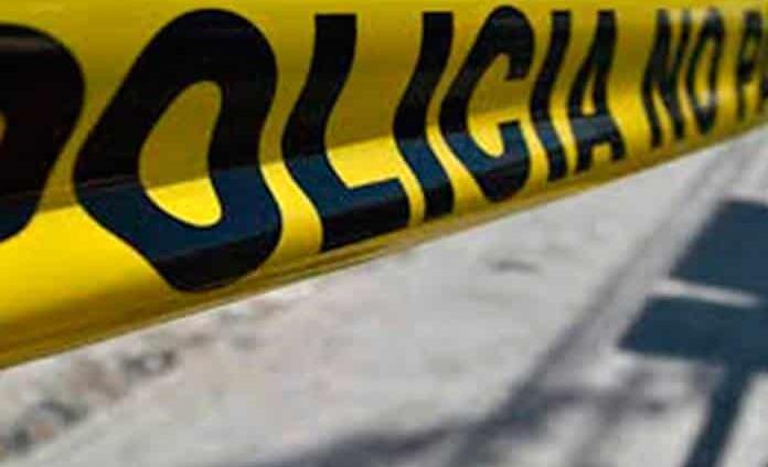 Hallan cuerpos de 8 hombres con tiro de gracia en Zacatecas