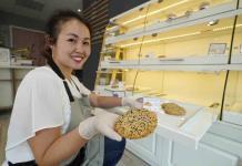 Pastelerías en EEUU mezclan los sabores de Asia con los de Occidente