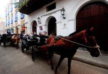 Los célebres coches de caballos de Cartagena: ¿un oficio o maltrato animal?