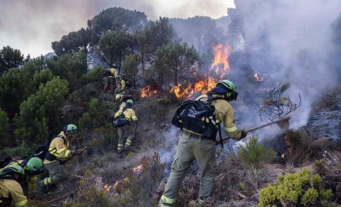 Controlan incendio forestal de Málaga