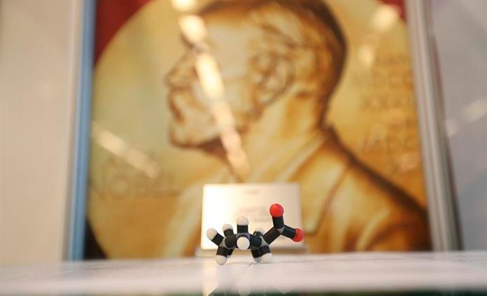 Organocatálisis, la herramienta para construir moléculas premiada con el Nobel de Química