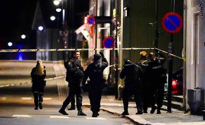 Cinco muertos y dos heridos en ataque con arco y flechas en Noruega