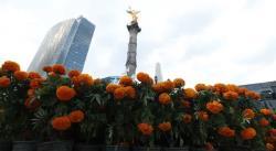 CDMX prepara el Día de Muertos con miles de flores de cempasúchil